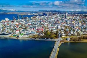 Reykjavik City Sightseeing by Minibus