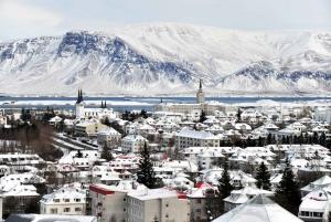 Reykjavik City Walking Tour