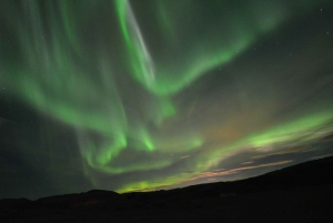 Reykjavik: Golden Circle & Northern Lights Combo Tour