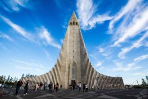 Reykjavik:Golden Circle, South Coast & Northern Lights Combo