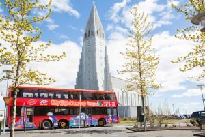 Reykjavik Hop-On Hop-Off Tour: 24 or 48-Hour Ticket