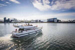 Reykjavík: New Year's Eve Northern Lights Yacht Cruise
