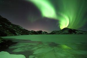 Reykjavik: Northern Lights and Secret Lagoon Trip