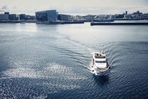 Reykjavik: Northern Lights Luxury Yacht Cruise