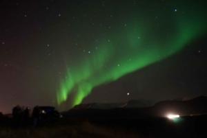 Reykjavik: Northern Lights Small Group Minibus Tour