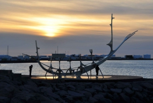 Reykjavik: Private Tour with a Local