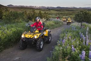 Reykjavik Quad Bike Twin Peaks Tour