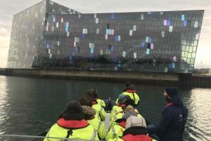Reykjavík: RIB Speed-Boat Puffin Watching Tour