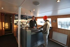 Reykjavík: Scenic Whale Watching Tour