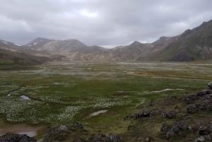 Reykjavik: Tailor-Made 10-Person Exploration Tour