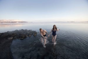 Reykjavik: Warm Baths and Cool Lights with Dinner Buffet