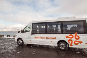 Small-Group Premium Southern Iceland Tour from Reykjavik