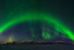 The Blue Lagoon & Northern Lights Tour with Admission Ticket
