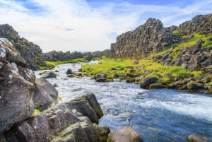 The Golden Circle and Fridheimar Day Tour from Reykjavik