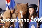 The National Icelandic Horse Competition - Landsmót hestamanna 2016