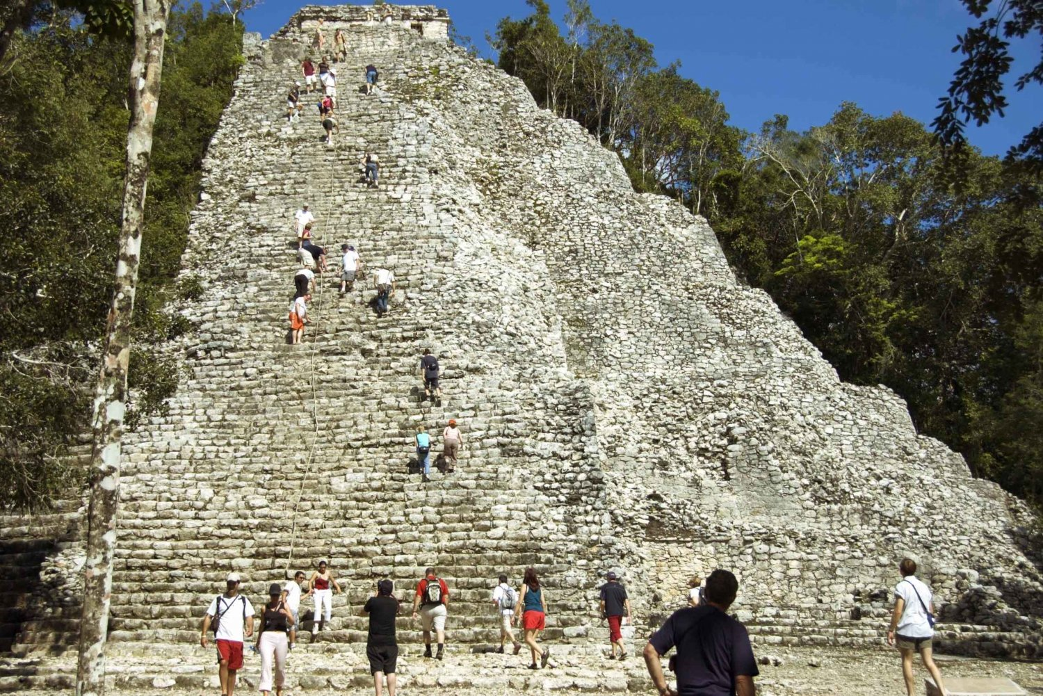 Coba: Bike Tour with Cenote Swim and Buffet Lunch