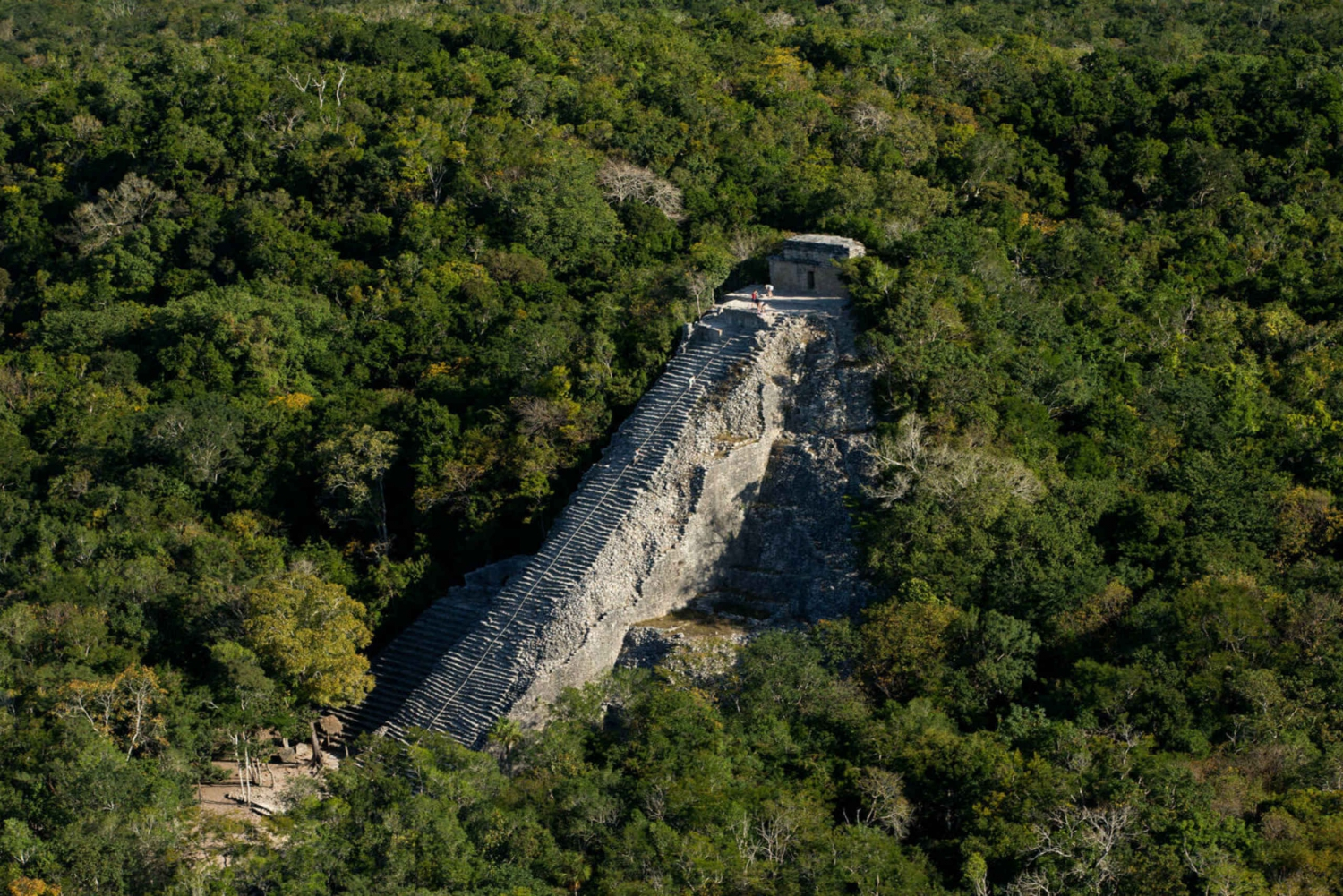 Coba Maya Cenote and Lagoon Full–Day Experience
