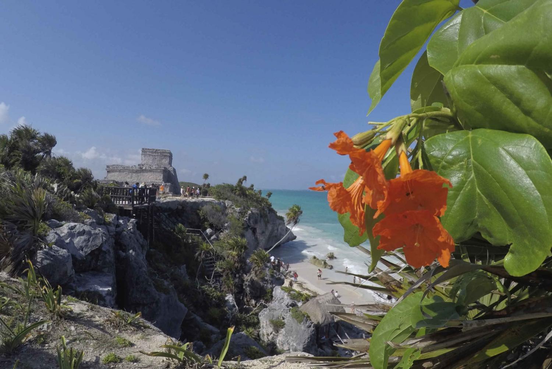 Cobá, Tulum and Tankach-Ha Cenote