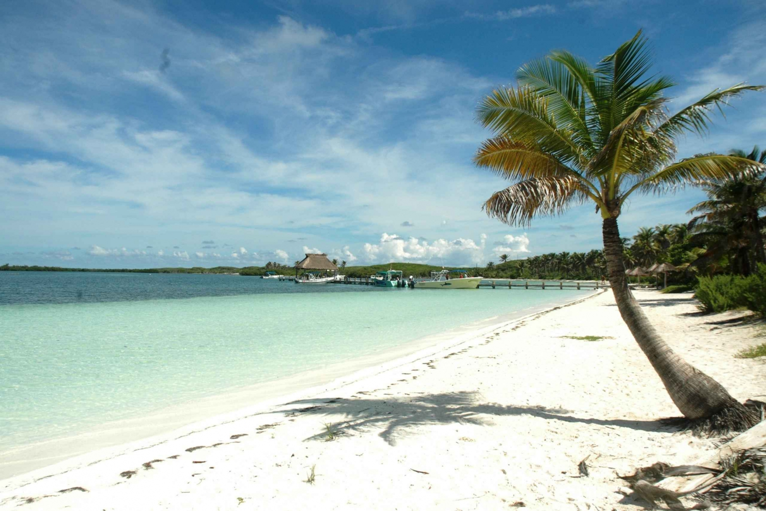 Contoy and Isla Mujeres Full-Day Tour with Transport