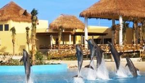 Dolphinaris Park