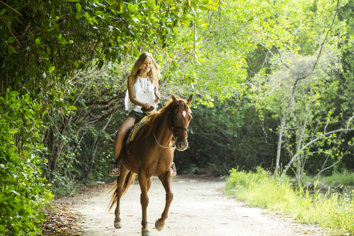 Horseback Riding in the Caribbean Jungle
