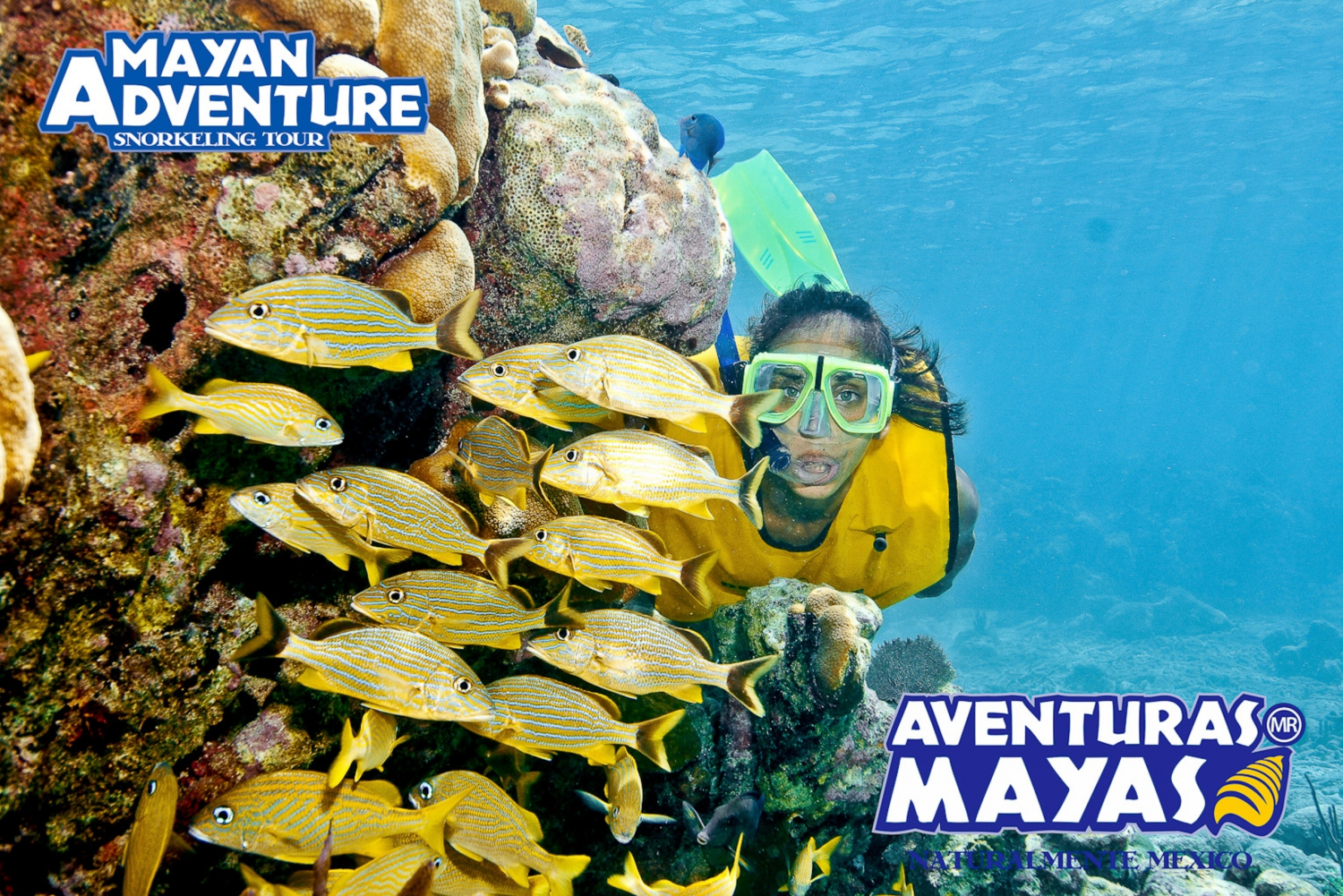 Mayan Adventure - 3 different snorkeling sites in one day!