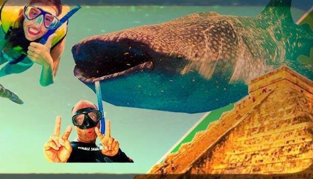 Ocean Tours