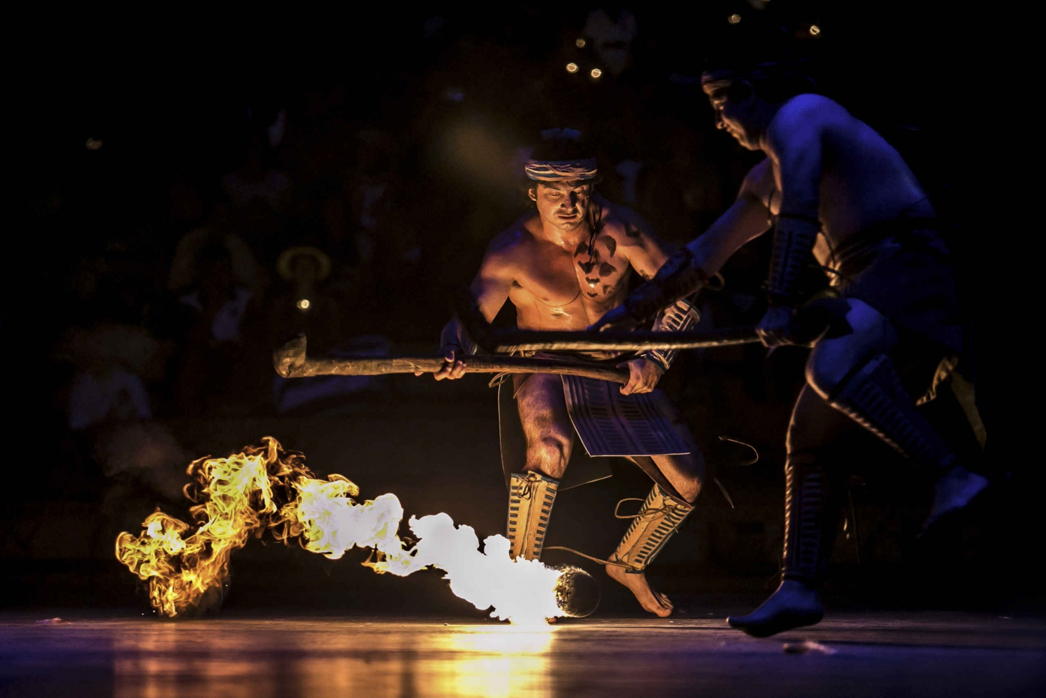 Xcaret Park Tickets and Tour from Riviera Maya