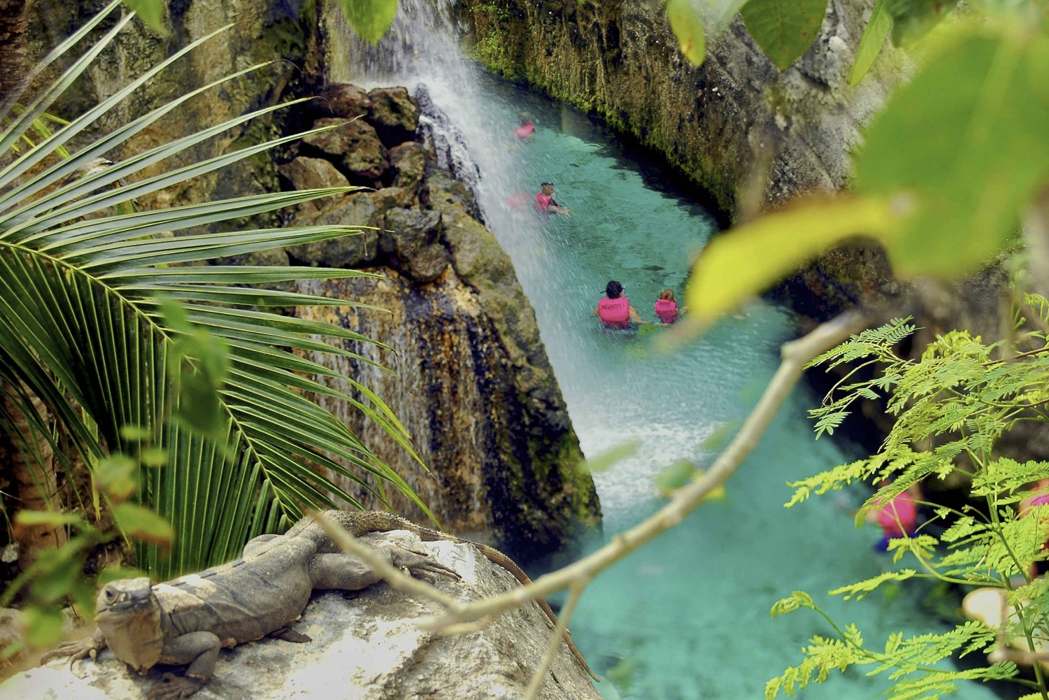 Xcaret Park Tickets: Full-Day Riviera Maya Trip