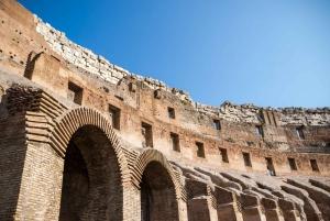 Colosseum Express Guided Tour
