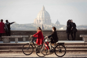 Half-Day Panoramic Tour by Electric-Assist Bicycle