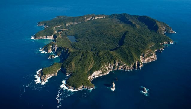 Tuhua: The Must Visit Island of The Bay Of Plenty