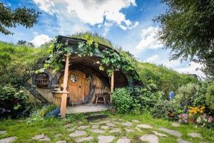 Auckland to Waitomo Caves & Hobbiton Day Tour