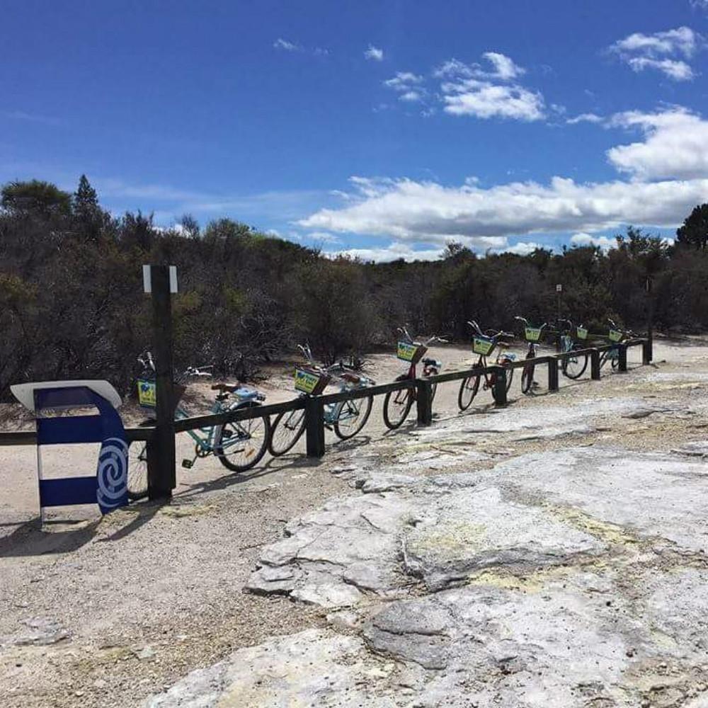 Happy Ewe Cycle Tours