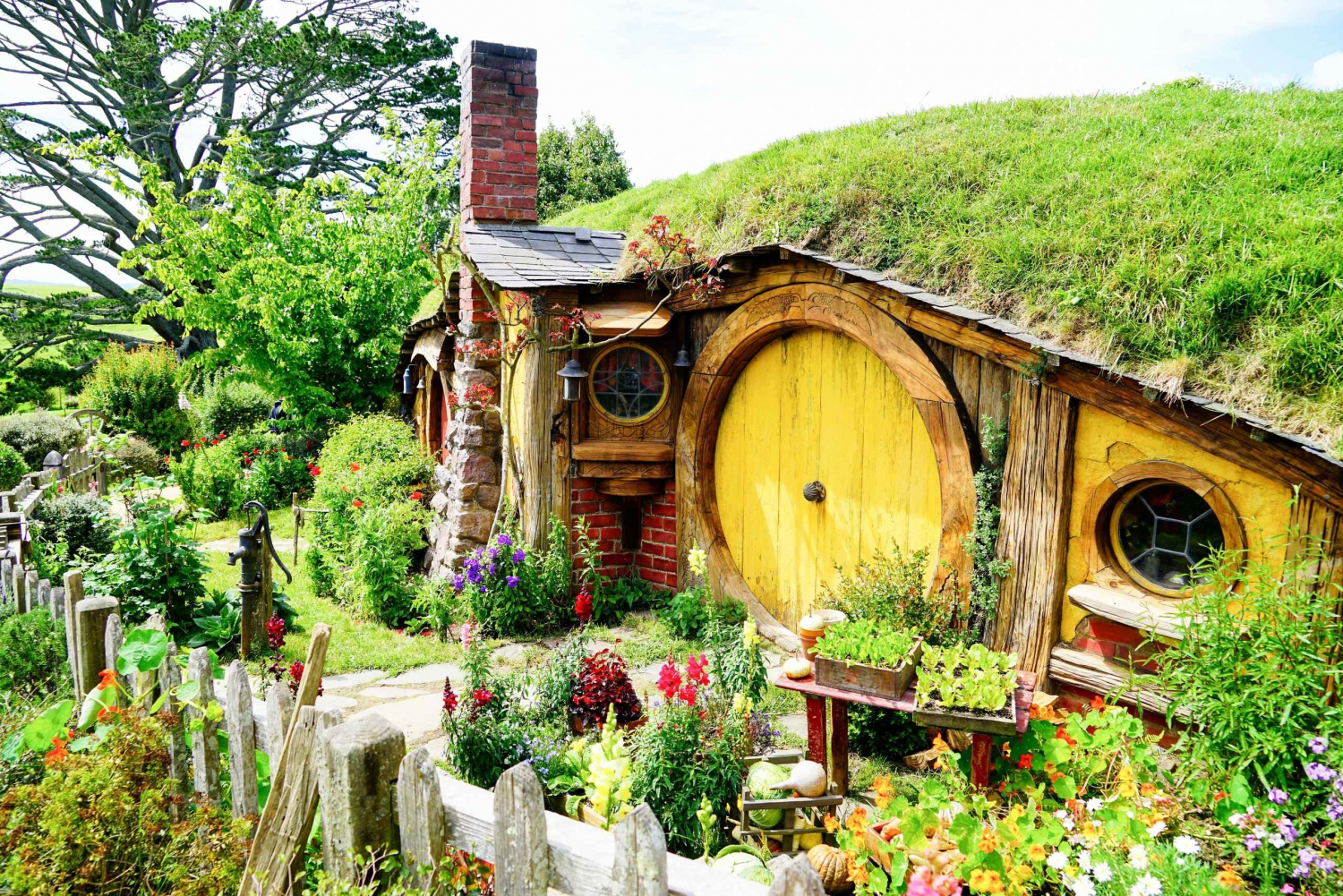 Hobbiton, Rotorua & Waitomo Caves Day Tour from Auckland