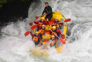 Kaituna River: 3.5-Hour Whitewater Rafting Experience
