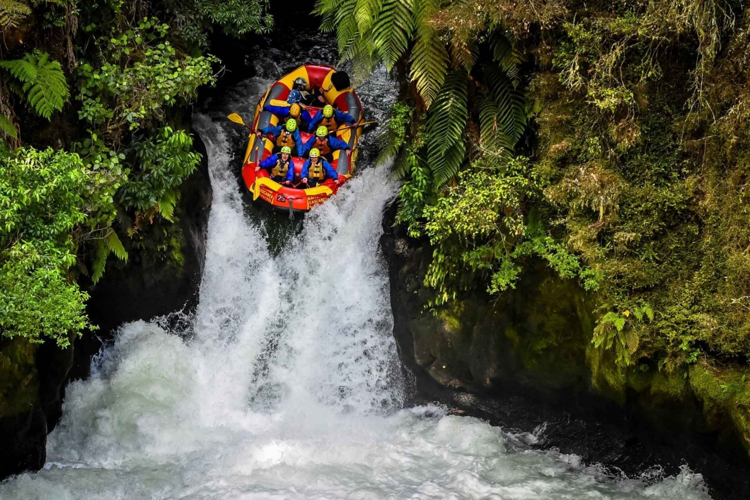 Best Adrenaline Activities In Rotorua