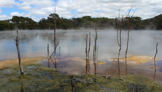 Best Places To See in Rotorua