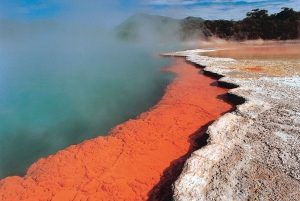 New Zealand: Auckland to Wellington 3-Day Tour via Rotorua