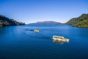 Tarawera and Lakes 2-Hour Duck Tour