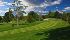 Tauranga Golf Club