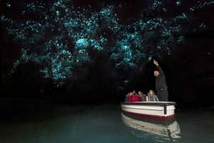 Waitomo Glowworm Caves Tour & Transfer From Rotorua