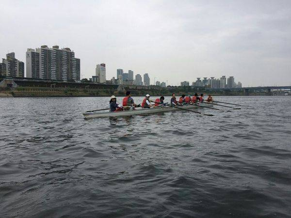 Evening Activity on The Han River: Rowing