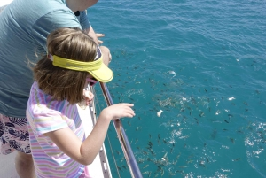 Mahe : Reef Safari at St Anne Marine National Park