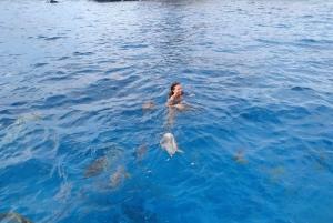 Praslin: La Digue, Cocos, and Felicity Islands Private Trip