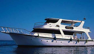 Tiran Island Snorkling Boat Trip