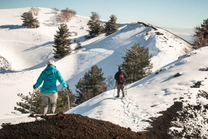 Catania: Guided Winter Hike up Northeast side of Mount Etna