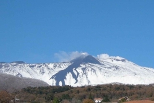 Etna Volcano: Geological Excursion on Active Volcano