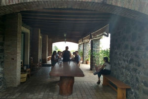 Etna: Wine Tasting Tour