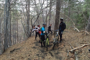 From Catania: Etna Downhill Mountain Biking Experience